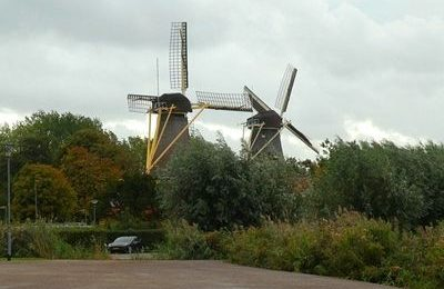 Mills in Rotterdam
